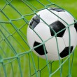 Soccer goal! - Stock Photo