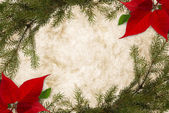 Bordered Christmas Parchment — Stock Photo