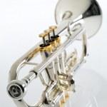Trumpet — Stock Photo #4223715