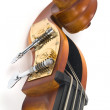 Violin — Stock Photo #4223833