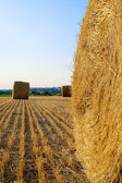 Landscape with hay roll — Stock Photo