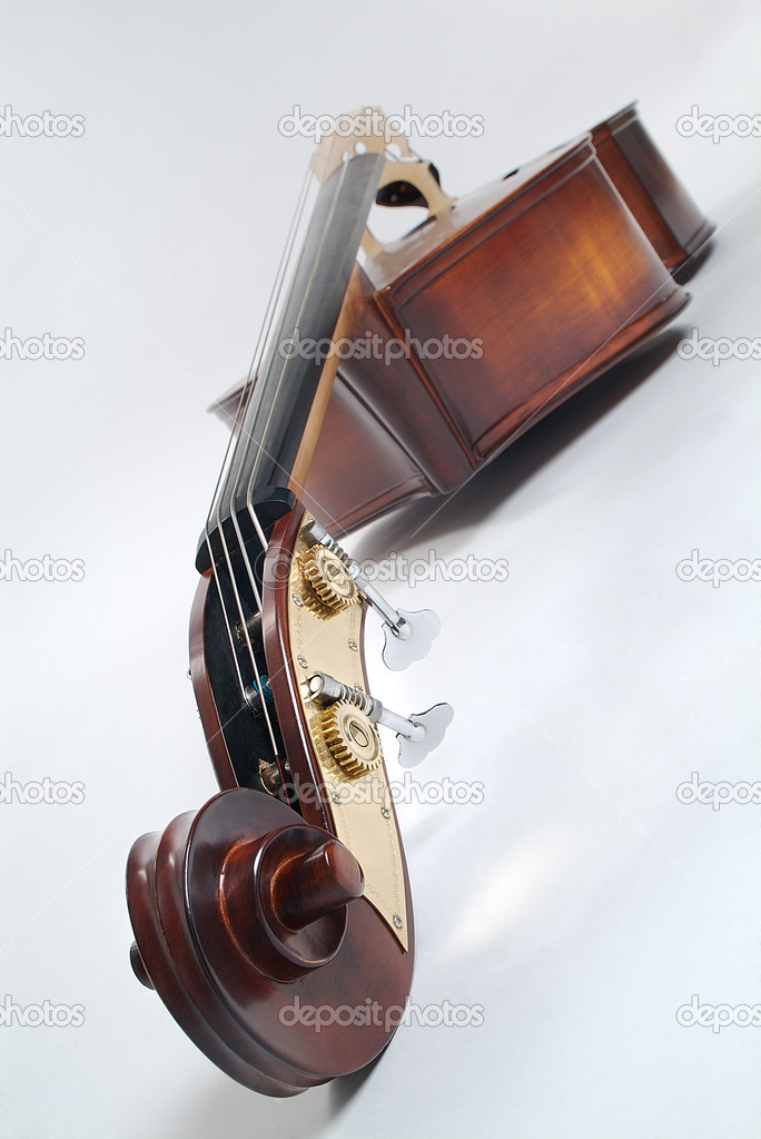 Detail view of violin  Stock Photo #4223818
