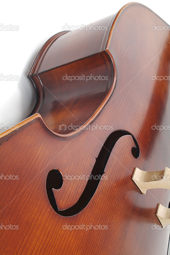 Detail view of violin — Stock Photo #4223829