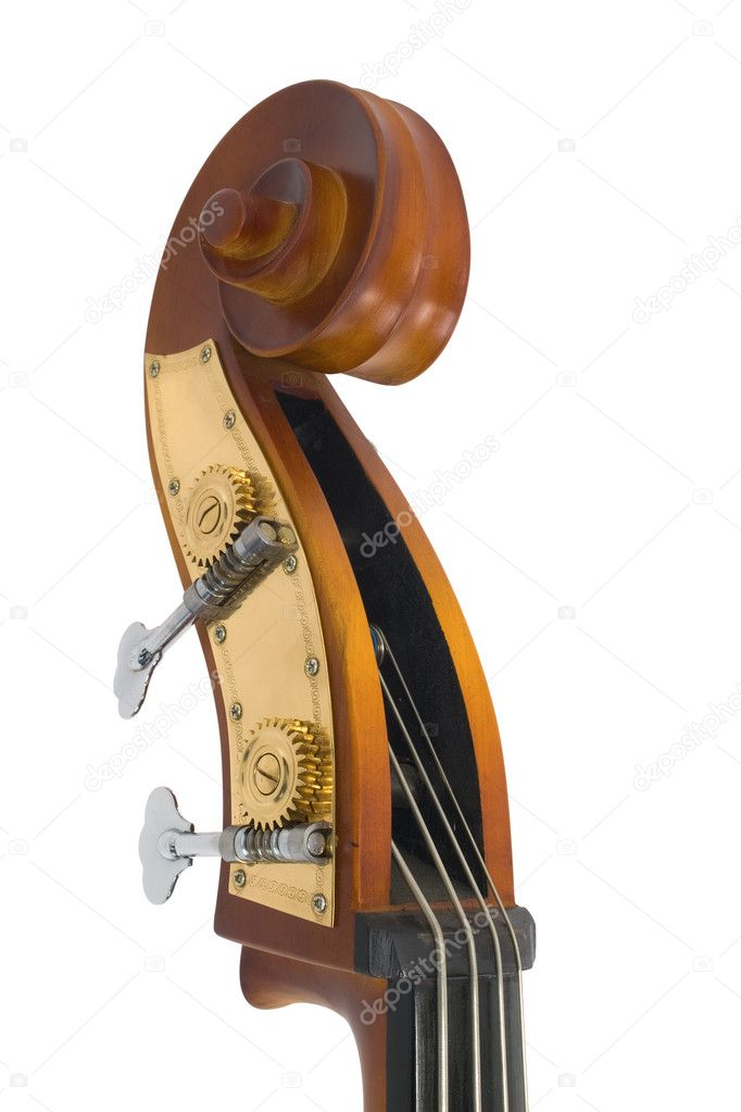 Detail of violin  Stock Photo #4223835
