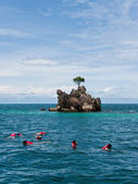 Snorkeling seen Coral and Fish in Phuket South of Thailand — Stock Photo