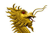 Golden dragon head statue on white backgroud — Photo