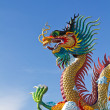 Many big dragons are color , a city is Nakolsawun, Thailand — Stock Photo
