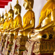 Golden sitting Buddha statues - Stockfoto