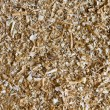Close up on wood chips and sawdust texture — Stock Photo
