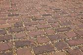 Stones of the pavement — Stock Photo