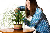 Woman spraing the plant — Stock Photo