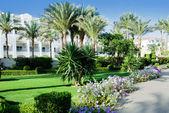 Hotel garden — Stock Photo