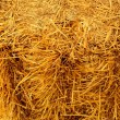Bale of straw — Stock Photo