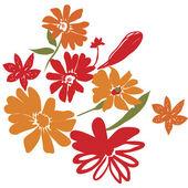 цветы — Stock Photo