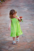 The charming child walks a road and admires beautiful orange flower — Stock Photo