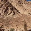 Stock Photo: Mount Sinai 2