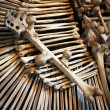 Human bones on a pile — Stock Photo