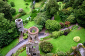 Aerial view of Blarney castle's towers and park — Stock Photo