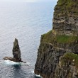 The Great Sea Stack at the Cliffs of Moher — Stock Photo #4477827
