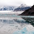 Glacier Bay Fjord — Stock Photo