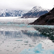 Glacier Bay Fjord — Stock Photo #4667742