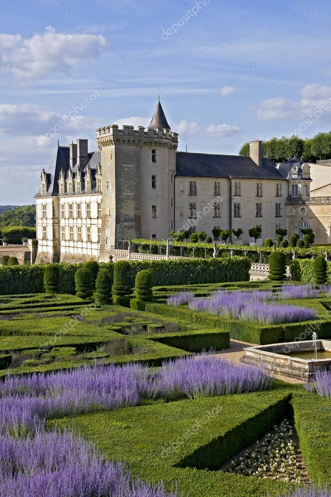View with Lavender in park of Chateau de Valencay — Stock Photo #4667739