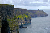 Magnificent view of the Cliffs of Moher — Stock Photo