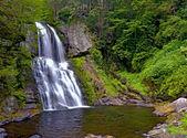 Bushkill falls — Photo