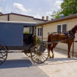 Amish Horse and Buggy — Stock Photo