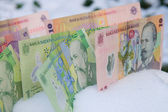 Romanian Money in the Snow — Stock Photo