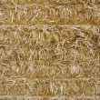 Close-up of baled wheat straw — Stock Photo