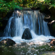 Waterfall — Stock Photo #4250503