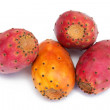 Cactus fruits — Stock Photo #4251743