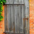 Old door — Stock Photo #4252500