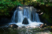 Queda de água — Fotografia Stock