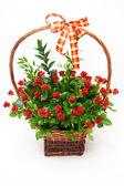 Mandje van rozen — Stockfoto