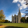 Salisbury cathedral — Stock Photo