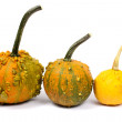 Stock Photo: Three different pumpkins