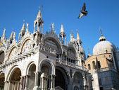 San Marco square, Venice — Stock Photo