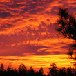 Flaming sunrise untouched — Stock Photo
