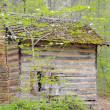 Bucolic cabin — Stock Photo