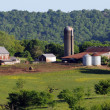 Stock Photo: Farm on Natchez Trace