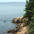 Stock Photo: Maine rocky coast