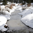 Winter stream — Foto de Stock