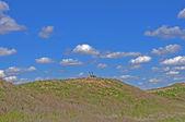 Geese on Kansas hill — Stock Photo