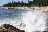 Maine ocean — Stock Photo