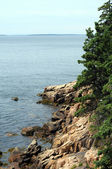 Maine rocky coast — Stock Photo