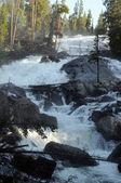 Montana wilderness cascade — Stock Photo