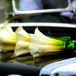 Calla Lilies on Posh Car Hood — Stock Photo
