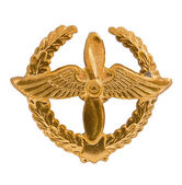 Emblem of the Air Forces — Stock Photo
